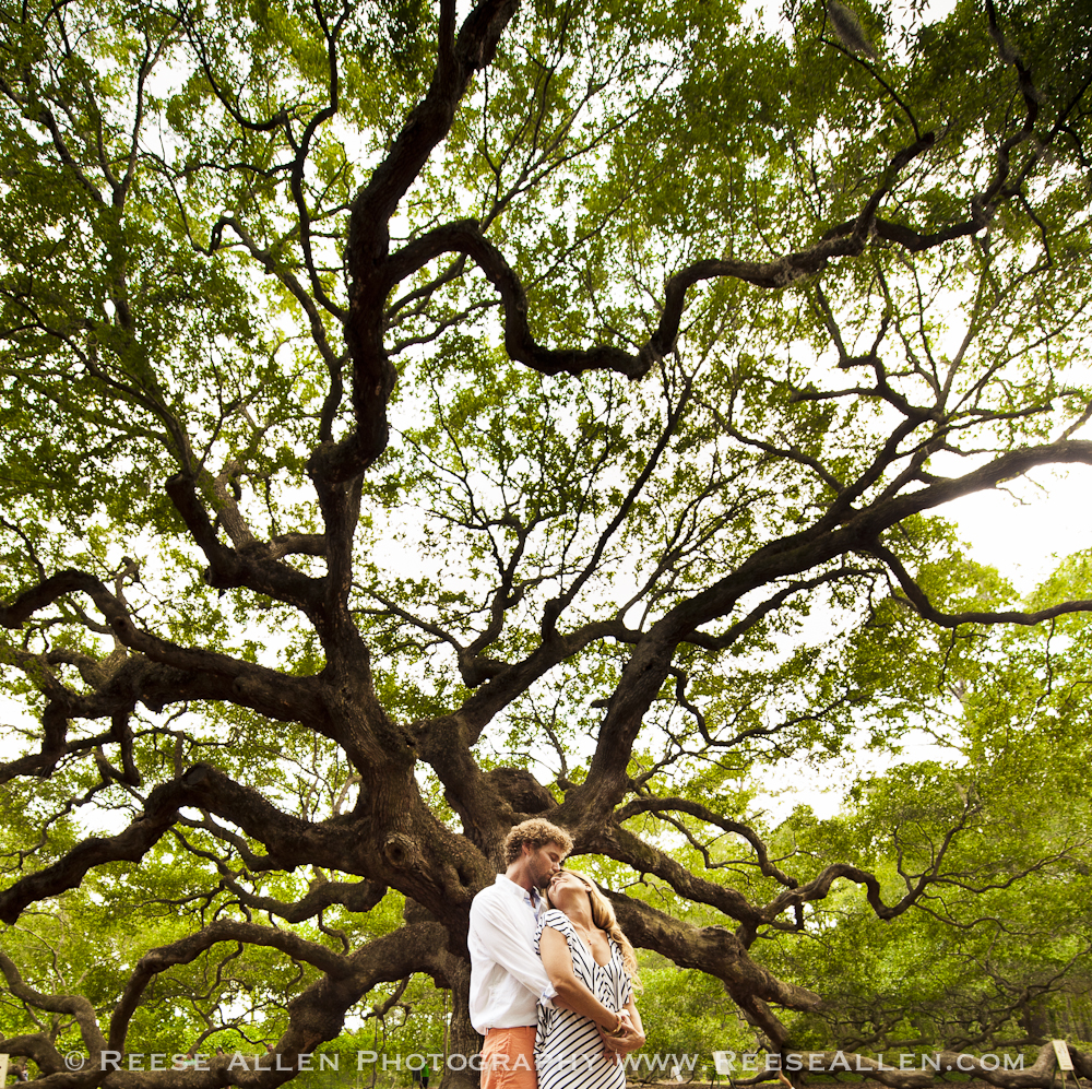 Reese Allen Photography- Engagement photos downtown Charleston Angel Oak Nina Ryan (22 of 24).jpg