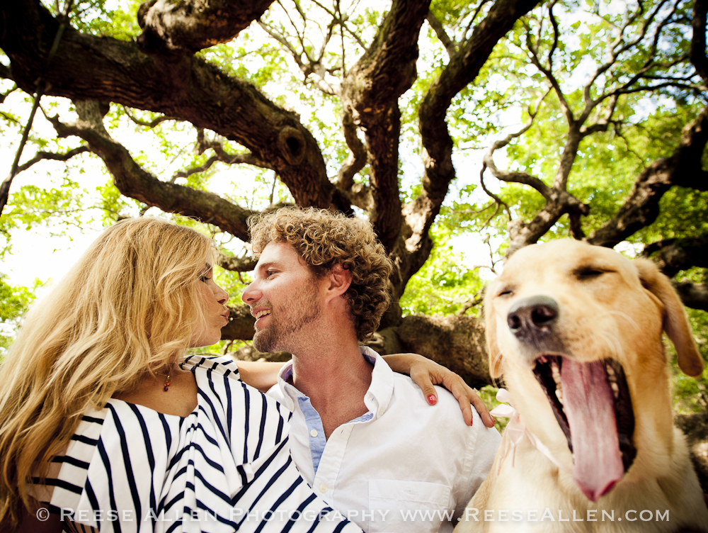 Reese Allen Photography- Engagement photos downtown Charleston Angel Oak Nina Ryan (23 of 24).jpg